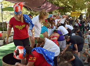 Test your grape-stomping skills at these fall festivals