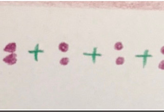Picture 3: pictogram of 4 sets of twins (2s)