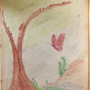 After the middle of book is located, use the page to the righthand side as page 1: Draw & write 'Nature Stories'