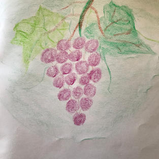 pic 1: p15, draw 20 grapes to share