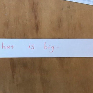 Sentence Fixer 1