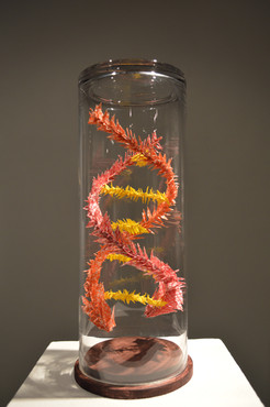 DNA (Private collection)
