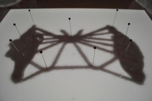 Perceptible (Shadow)
