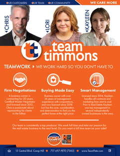 Team Timmons Flyer