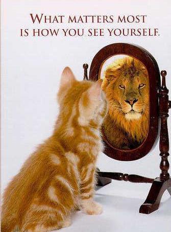 בטחון עצמי ואמונה עצמית