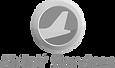 Logo-N-4.png