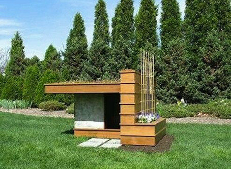 Are These Really Dog Houses?!
