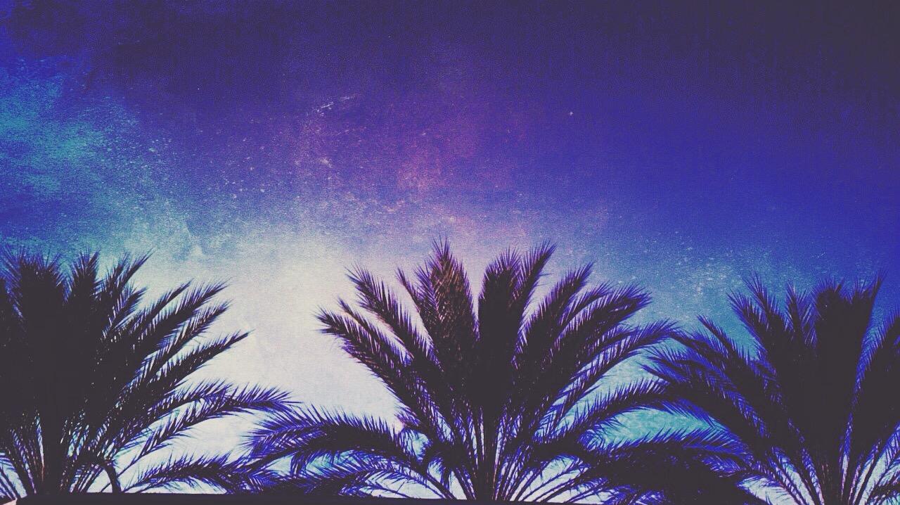Palms Purple