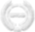 sdvosb-logo-white.png