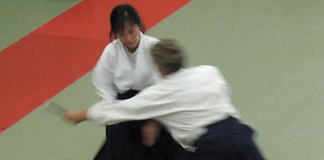aikido martial arts self defense mixed martial arts edmonton area st. albert alberta workout fitness