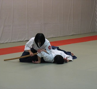 aikido dojo fitness martial art yeg edmonton area st. albert alberta samurai self defense