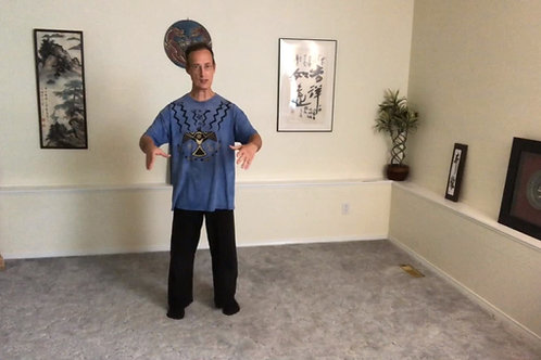 Tai Chi (Chi Gong) Follow Along Exercises (Standing or Seated)