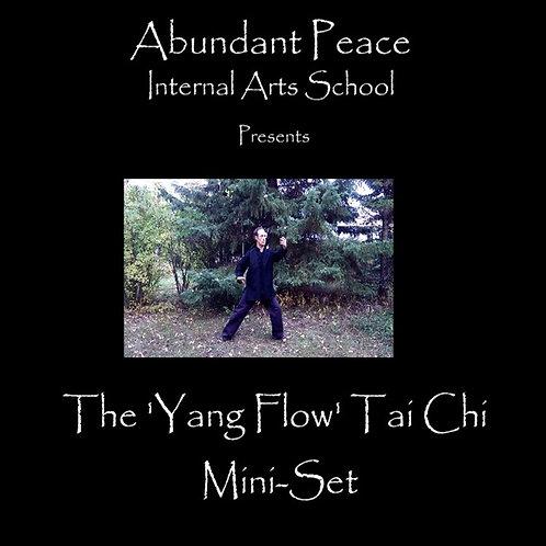 Yang Flow Tai Chi Mini Set DVD