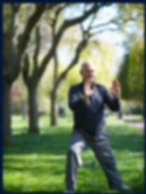 gentle fitness tai chi chi gong meditation edmonton area st. albert alberta yoga classes yoga course