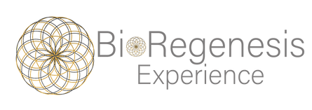 Bioregenesis Experience.png