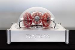 rasha_andaambrosini43