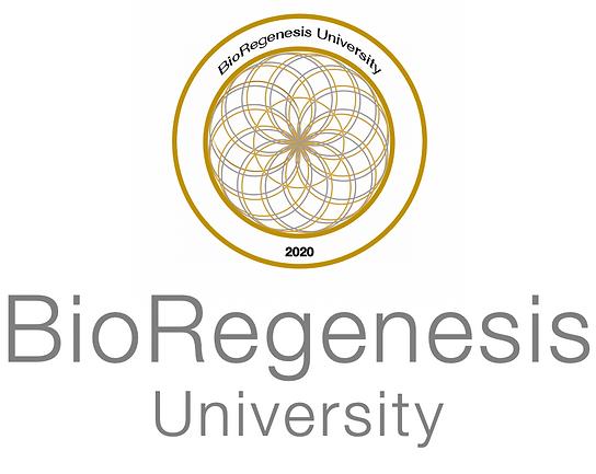 BR Uni Logo.png