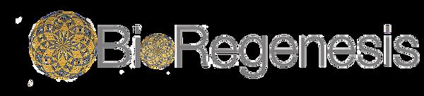 BioRegenesis New Logo copy.png