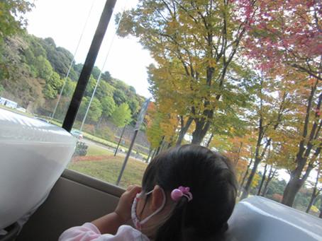 秋晴れの一日 11月5日(木)