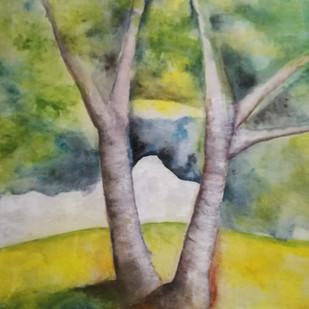 Betulla - Birch
