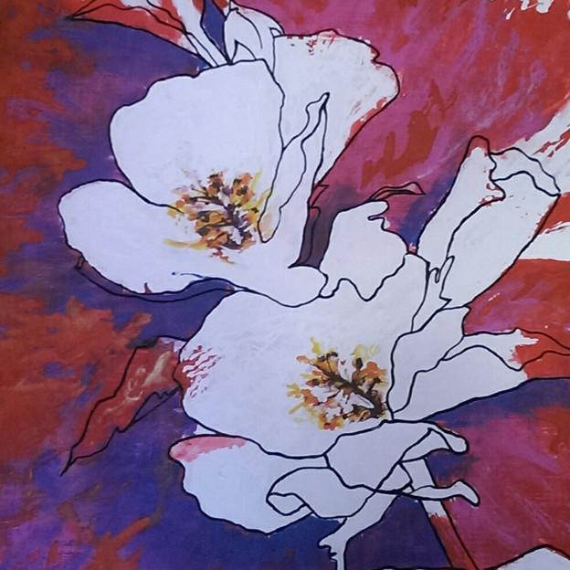 I fiori di Diana - Diana's flowers