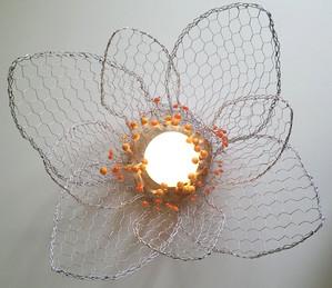 Fiore - Flower #6