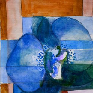 Orchidea - Orchid #3