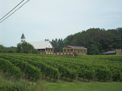 south-river-vineyard