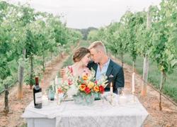 vineyard setting