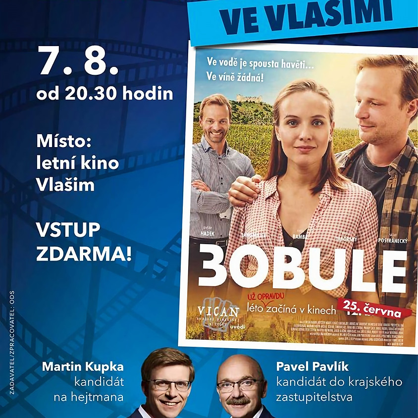 Letní kino Vlašim