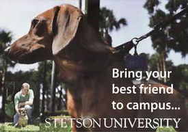 pet friendly colleges