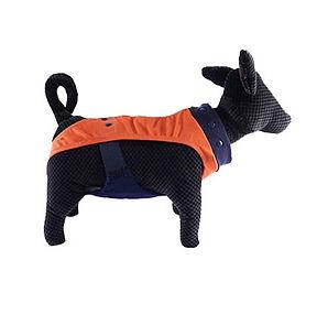orange-dog-diapers.jpg