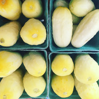 Miniature White Cucumbers