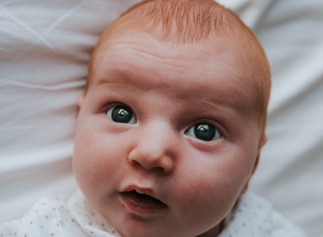 Newbornshoot Ilvy