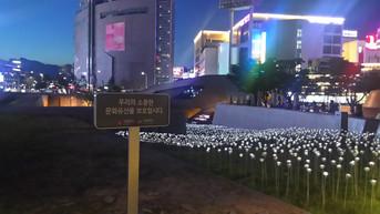 LEDバラ庭園