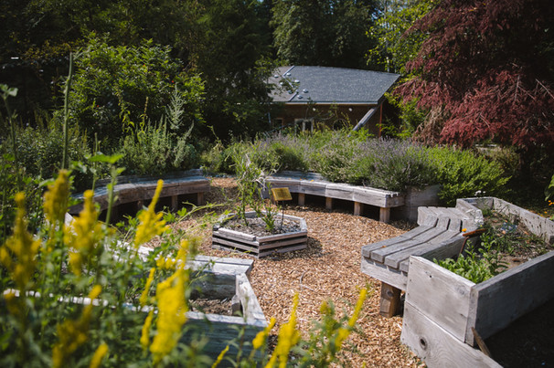 Longhouse_garden_july2018-6.jpg