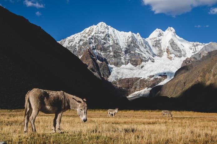 Peru-493.jpg
