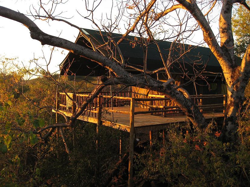 19 tent porch  Sally Kneidel.JPG