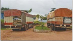 Bondoukou : Ces trafiquants d'anacarde qui défient le gouvernement