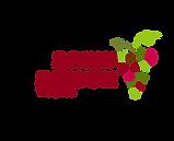 לוגו מחודש אשכולות בעמק ובהר-01.png