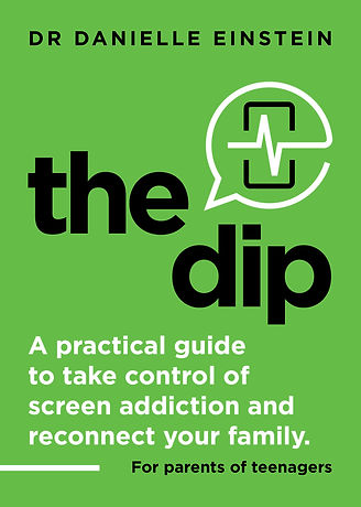 The_Dip_Book_Cover_2_FRONT.jpg