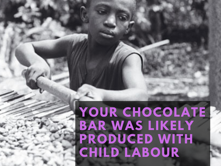 Do you know where your chocolate comes from?
