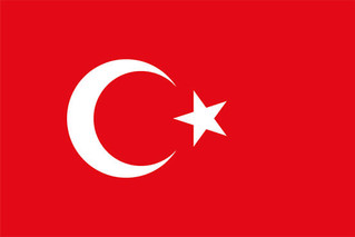Improving Access for the Disabled: A Project for Turkey
