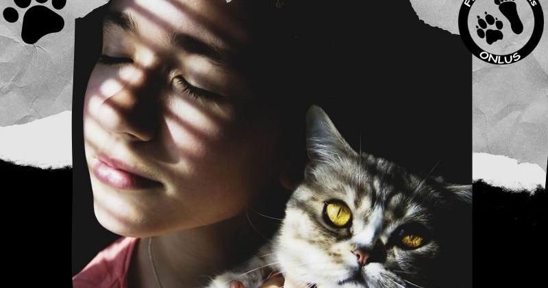 Mi_è_sembrato_di_vedere_un_gatto.jpeg