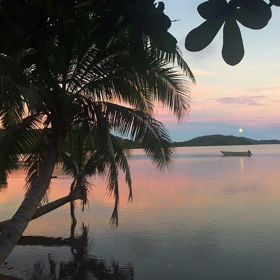 ME AND FIJI | FIJI EXPAT BLOGGER | FIJI RESORT FOR SALE | FIJI BLOG | MOVE TO FIJI | START BUSINESS IN FIJI