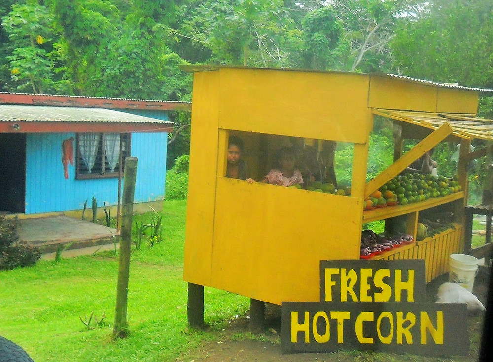 Bus trip Fiji hot corn sila - fiji travel blog fiji expat fiji holiday me and fiji