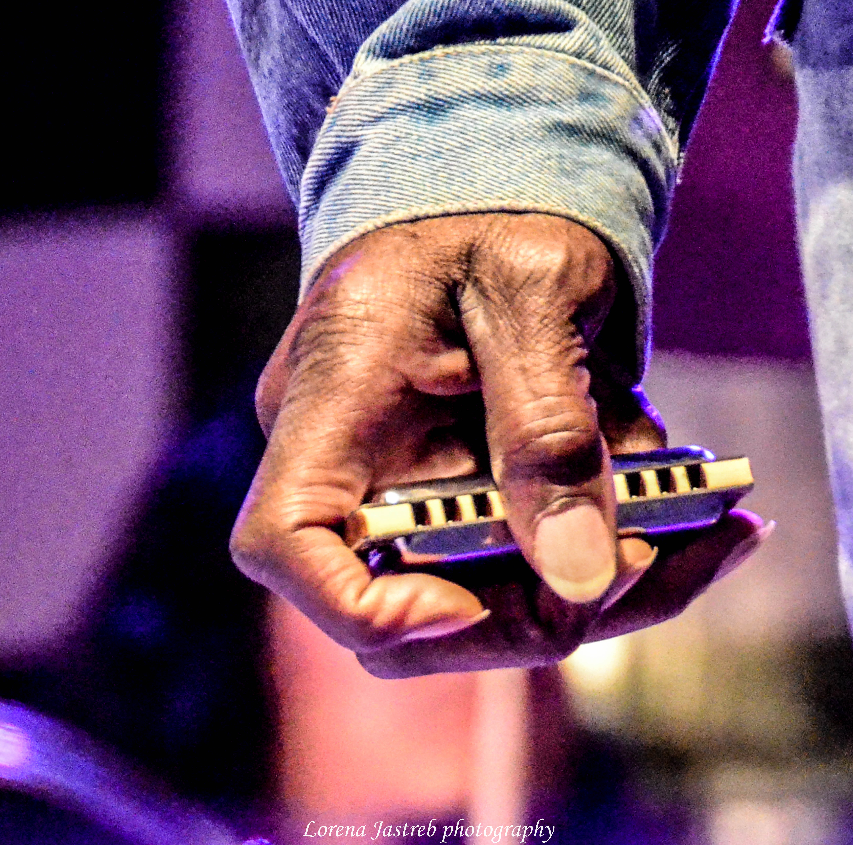 Lazzy Laster armonica