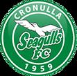 CSFC_Logo.png