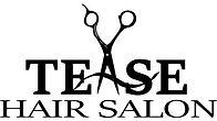 Tease Hair Salon Logo