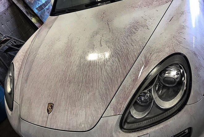 Porsche IronX